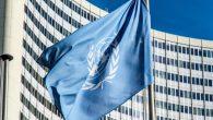 Naciones Unidas y CERMI