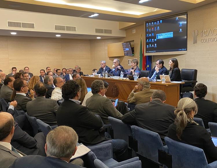 Pleno del Consejo General de la Abogacía Española